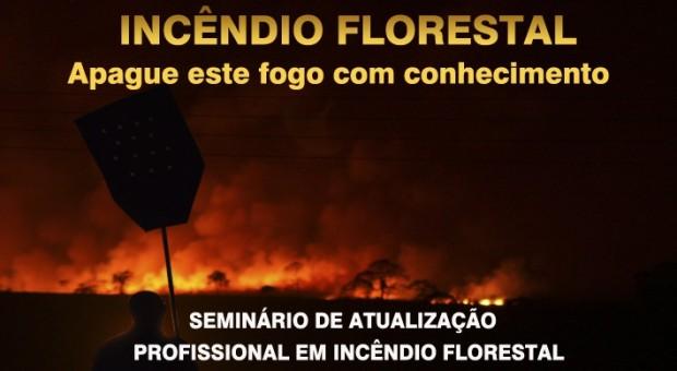 INCENDIO FLORESTAL 4BBM (1)
