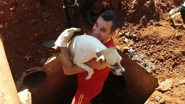 Resgate de Cadela em Goiatuba (11)