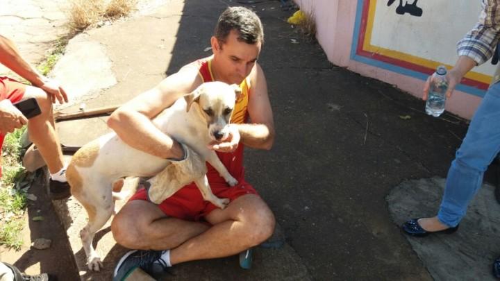 Resgate de Cadela em Goiatuba (3)